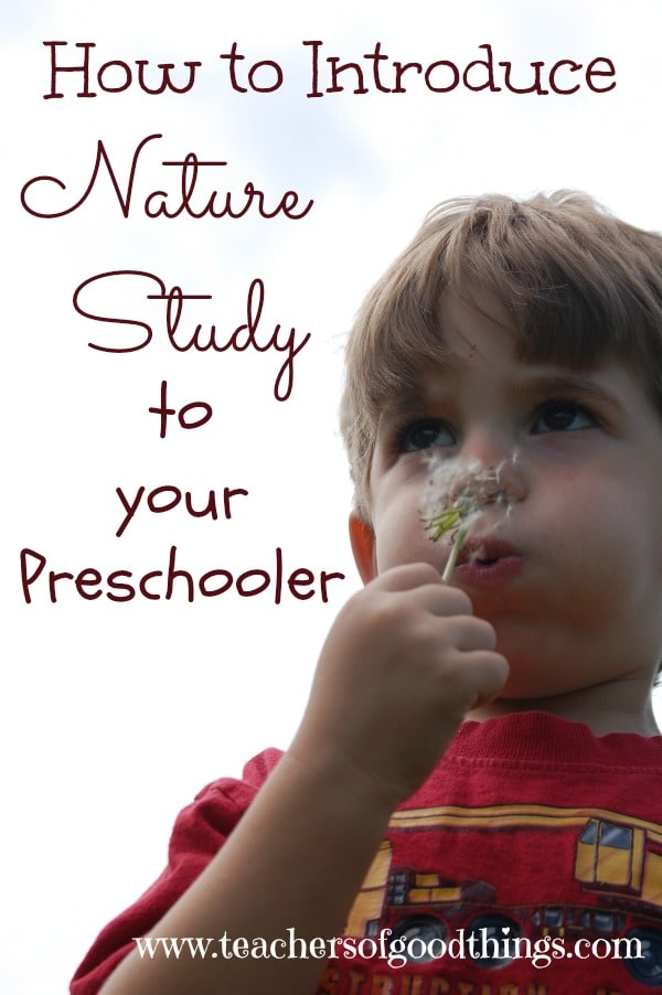 How to Introduce Nature Study to Your Preschooler #tendermoms @Titus2Teacher www.joyinthehome.com #preschool #naturestudy