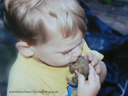 Yes, I came a long way from requiring work gloves to hold a frog, to taking a picture of my toddler kissing one. Note - it did NOT turn into a princess! But that child later had worts, where the one with gloves didn't get any.