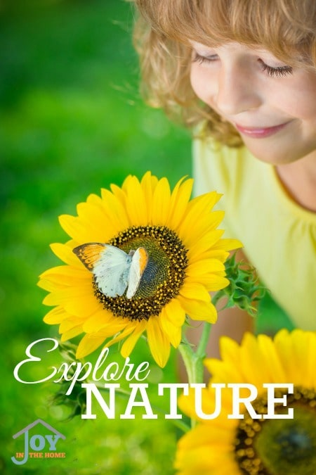 Explore Nature - Part of the 31 Days of Exploring Free Afternoon Activities   www.joyinthehome.com