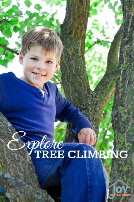 Explore Tree Climbing - Part of the 31 Days of Exploring Free Afternoon Activities | www.joyinthehome.com