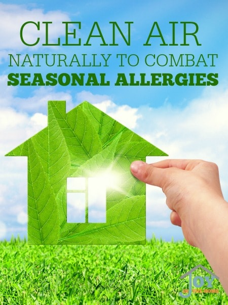 Clean Air Naturally to Combat Seasonal Allergies - Venta - Airwasher is the best humidifier and air washer. | www.joyinthehome.com